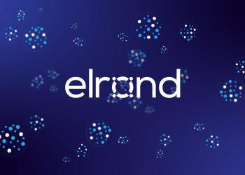 A'dan Z'ye Elrond (EGLD) Rehberi: EGLD Nedir? Nasıl Alınır?